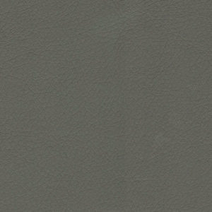 04 - Color CINZA ASH
