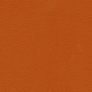 11 - Color LARANJA