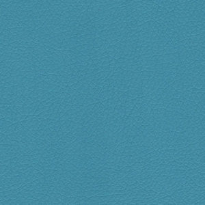16 - Color AZUL CEU